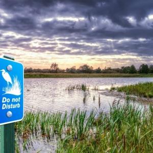 Wetland Preserve Sign