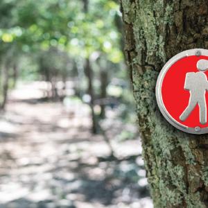 Red Hiker Trailite